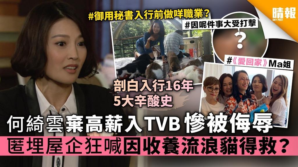《愛回家》 何綺雲棄高薪入TVB慘被侮辱 匿埋屋企狂喊 因收養流浪貓得救?