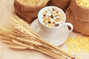 【穀類早餐】日日食穀類早餐粟米片麥片險致肥  盤點21款穀類脆片屬高糖水平