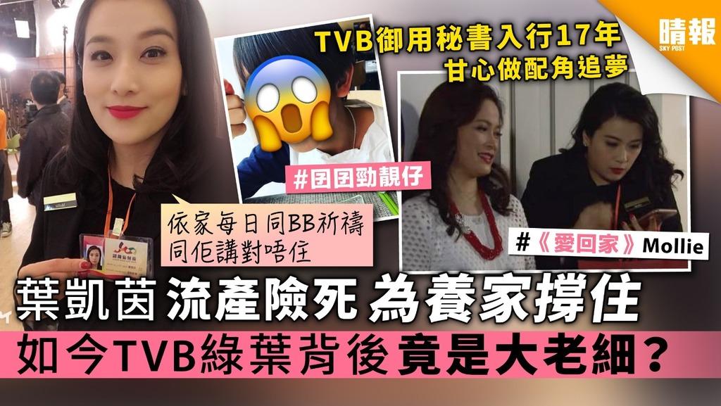 《愛回家》葉凱茵流產險死為養家撐住 如今TVB綠葉背後竟是大老細?