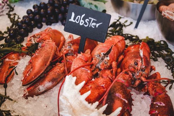 【飲食熱話】龍蝦從前竟是一文不值的「海曱甴」 更是窮人和囚犯的主要食糧?