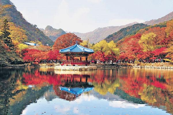 韓國2019年紅葉預報出爐