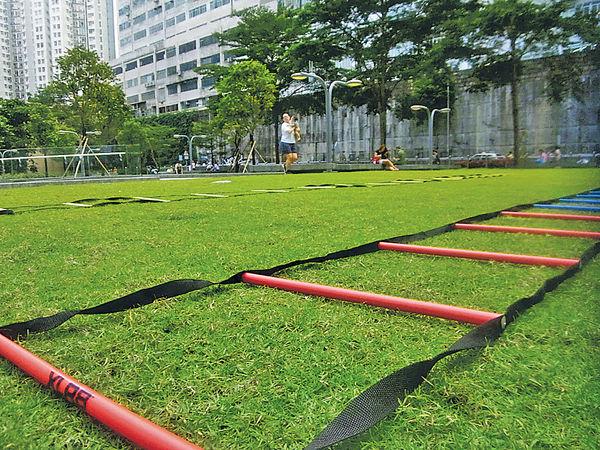 草地上的企業培訓