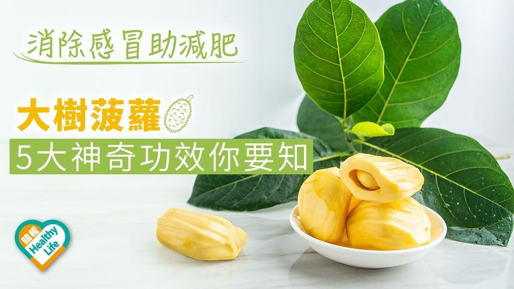 消除感冒助減肥!大樹菠蘿5大神奇功效你要知
