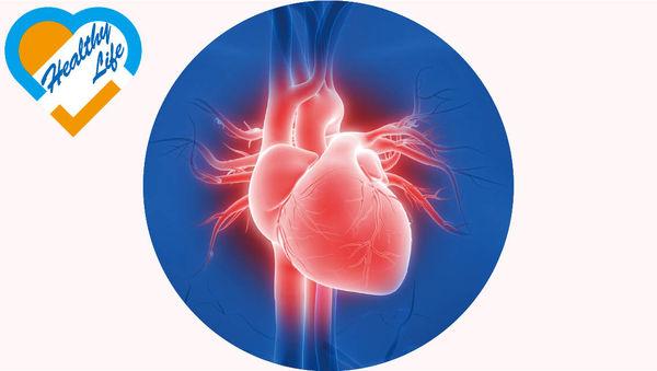 新系統透視心血管 通波仔更準更快