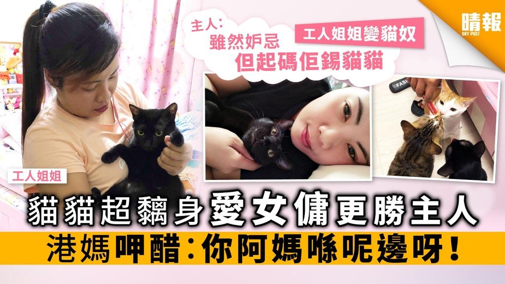 貓貓超黐身愛女傭更勝主人 港媽呷醋:你阿媽喺呢邊呀!