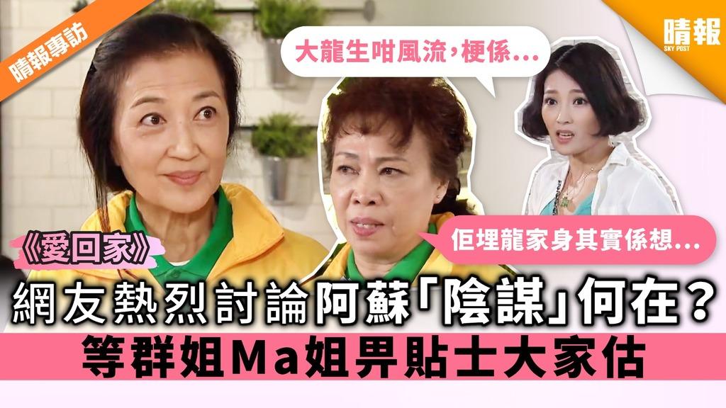 《愛回家》網友熱烈討論阿蘇「陰謀」何在? 等群姐Ma姐畀貼士大家估