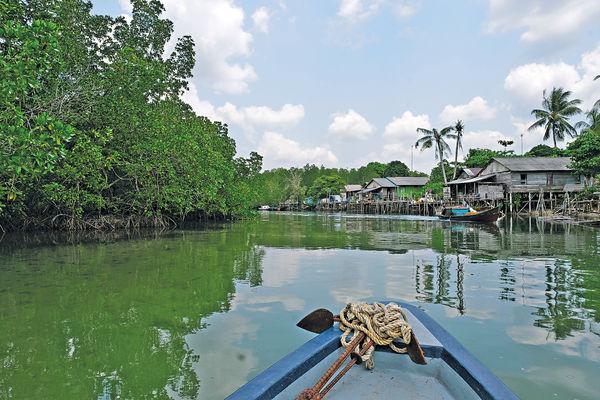 印尼民丹島 探索紅樹林 荒島浮潛樂