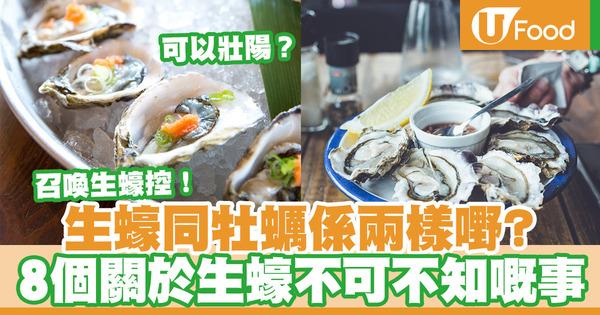 【生蠔】生蠔與牡蠣不同?可以壯陽?生蠔關於生蠔8件不可不知的事