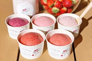 【東京美食2020】日本東京五級濃度士多啤梨雪糕 紅寶石草莓/草莓牛奶/草莓乳酪/雜莓味Gelato