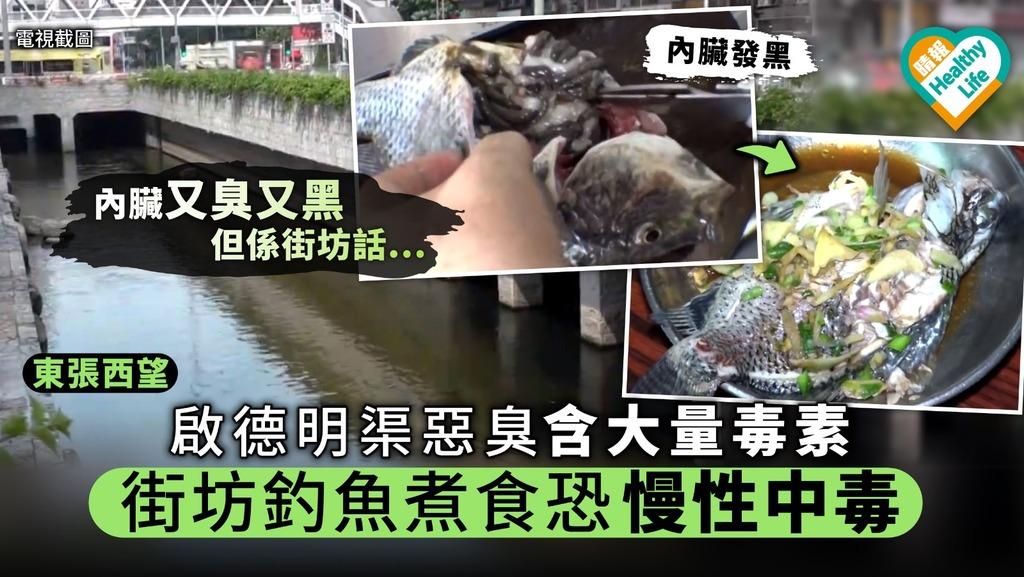 《東張西望》啟德明渠惡臭含大量毒素 街坊釣魚煮食恐慢性中毒