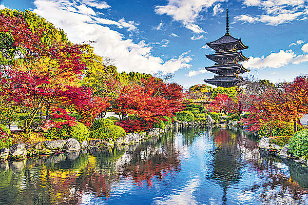 京都嵐山 11月下旬宜賞楓