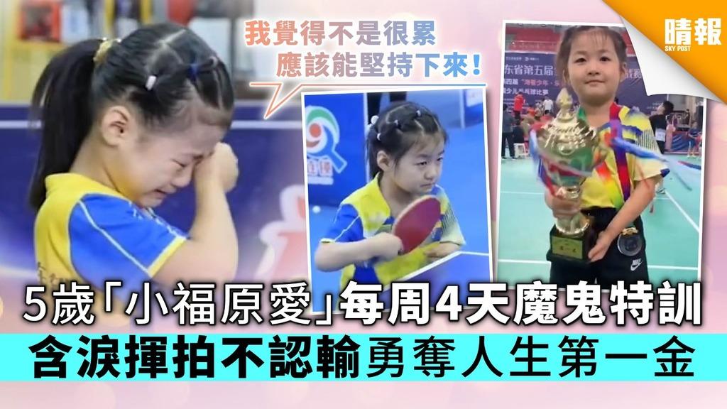 5歲「小福原愛」每周4天魔鬼特訓 含淚揮拍不認輸勇奪人生第一金