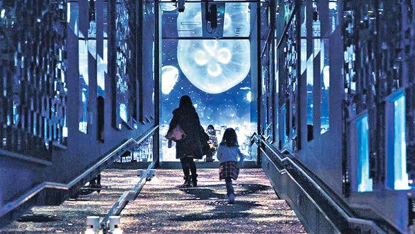 東京墨田水族館 2萬隻水母與飄雪投影共舞