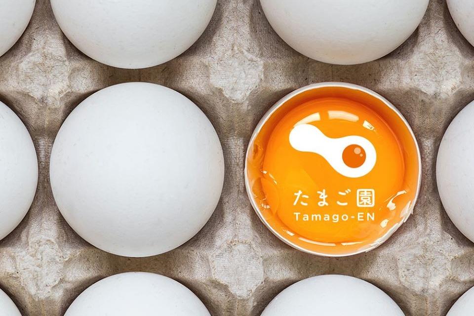 【蛋料理餐廳】新加坡過江龍日式蛋料理專門店Tamago-EN即將登陸香港旺角 半熟蛋薯蓉/梳乎厘Pancake/Eggs Benedict