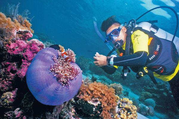 沙巴詩巴丹島 潛行全球10大最美海洋世界