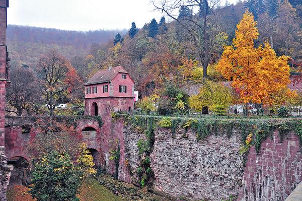 古堡遊蹤 感受萊茵河之秋