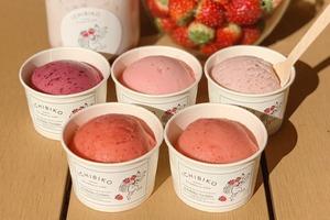 【東京甜品】日本東京士多啤梨甜品店「ichibiko」 5款新鮮士多啤梨gelato/蛋糕/飲品