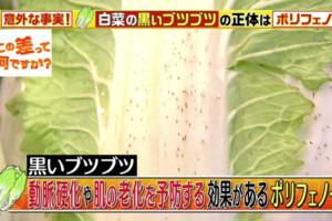 【飲食知識】大白菜出現黑點等於變壞/發霉?日本專家拆解營養反而更佳!