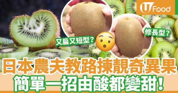 【奇異果變甜】日本農夫教路選擇超甜奇異果  簡單一招由酸都變甜!