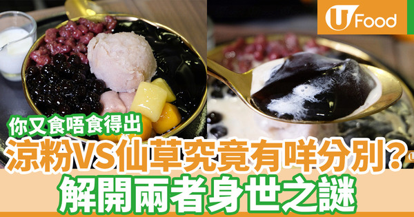 【涼粉VS仙草】涼粉、仙草究竟有甚麼分別?解開兩者味道口感身世之謎