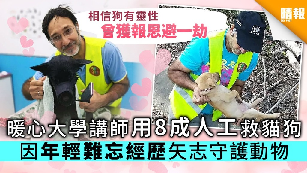 暖心大學講師用8成人工救貓狗 因年輕難忘經歷矢志守護動物