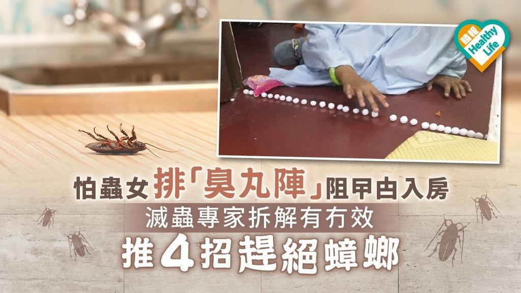 【驅蟲方法】怕蟲女排「臭丸陣」阻曱甴入房 滅蟲專家拆解有冇效推4招趕絕蟑螂