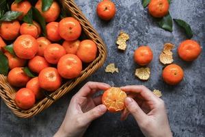 【農曆新年習俗】新年盆栽年桔可否食用?食安中心:未必遵循食物安全和衞生要求