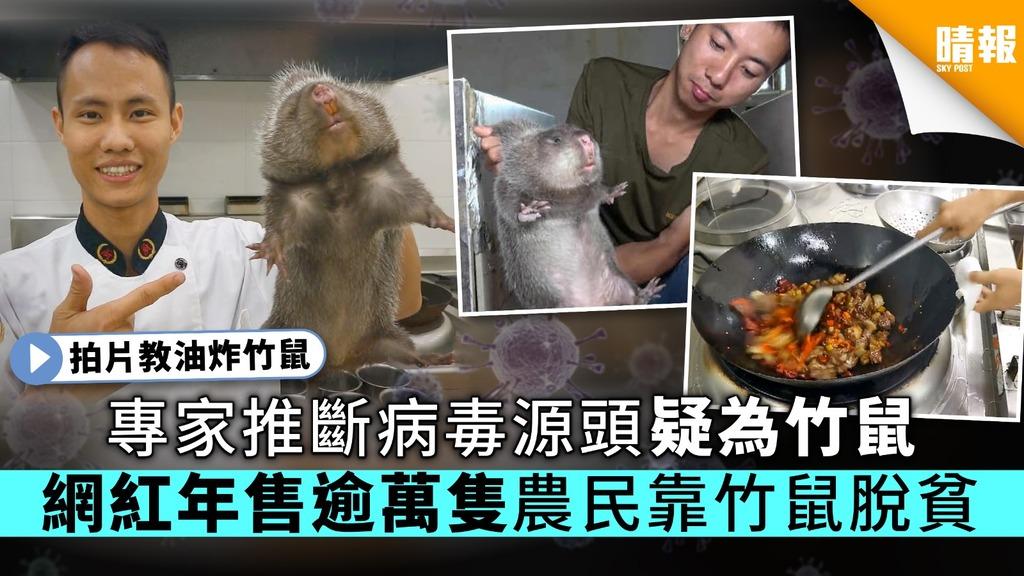 【竹鼠播毒?】專家推斷病毒源頭疑為竹鼠網紅年售逾萬隻農民靠竹鼠脫貧- 晴報- 時事- 要聞 - 晴報 Sky Post