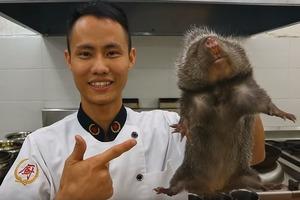 【武漢肺炎】竹鼠疑為肺炎病毒散播源頭 內地養殖戶年售萬隻變美食