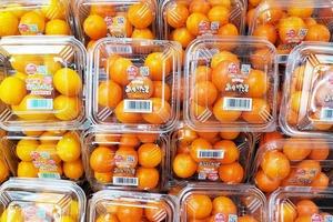 【水果網購】新年水果禮盒格價一覽!日本熊本縣士多啤梨/香印青提/晚白柚/蜜柑/蜜瓜