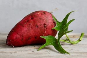 【番薯營養】番薯可增強免疫力/護心/護眼 5大番薯營養功效大公開+最佳烹調方法
