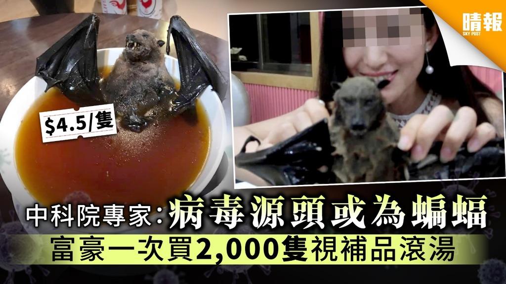 【武漢肺炎】中科院專家:病毒源頭或為蝙蝠 富豪一次買2,000隻視補品滾湯