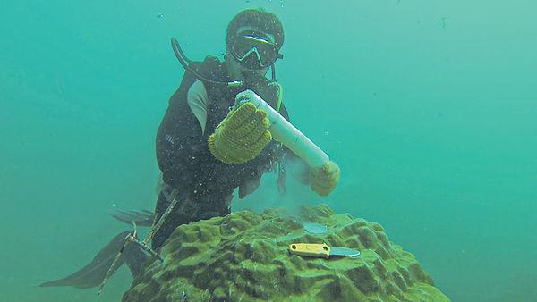 珠三角廢水處理不善 致珊瑚群減少