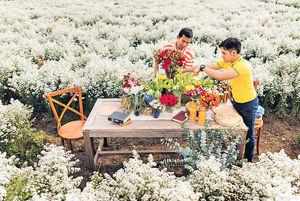 浪漫清邁 3萬呎花海農場