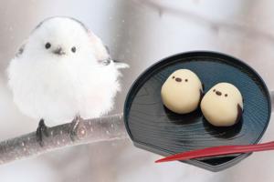 【北海道手信2020】日本北海道小白雀和菓子 小鳥圓碌碌排排坐可愛爆燈!