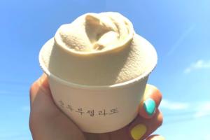 【韓國美食推介】韓國人氣豆腐雪糕Gelato 豆味香濃超軟滑