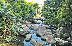 親子好去處 周末郊遊 探索小夏威夷瀑布 漫步日式竹林
