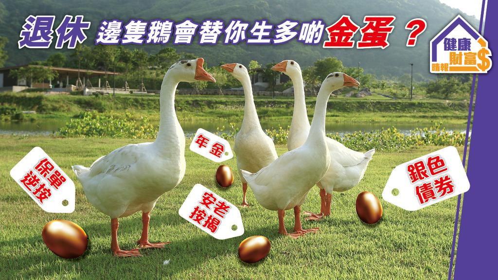 退休 邊隻鵝會替你生多啲蛋?