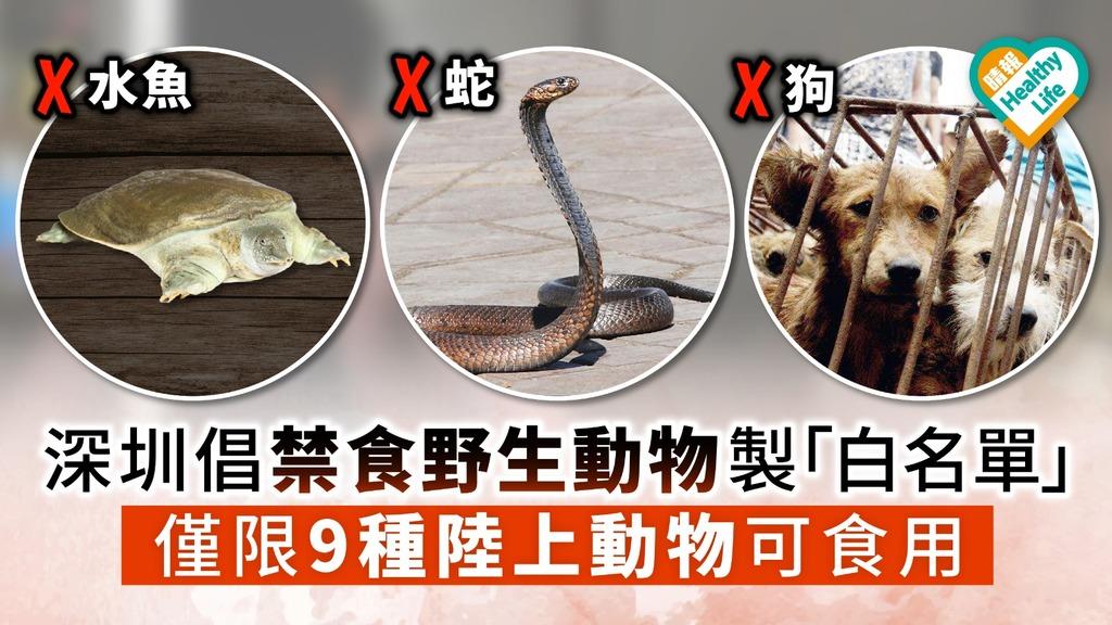 【禁食野味】深圳倡禁食野生動物製「白名單」 僅限9種陸上動物可食用