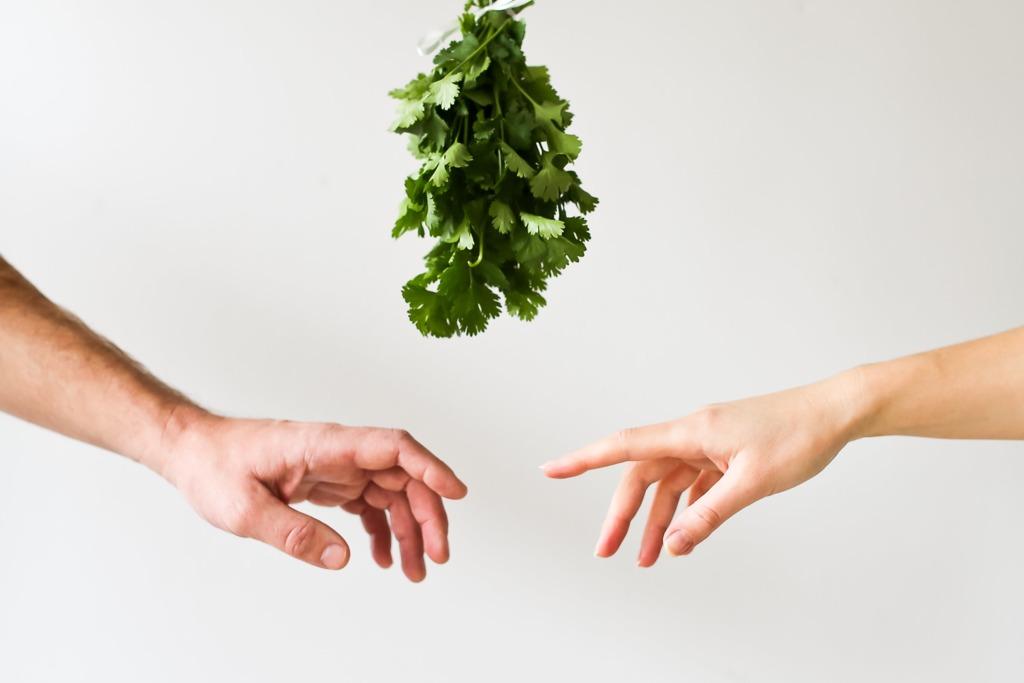 【芫荽營養】原來你一直讀錯芫荽! 關於芫荽14件不可不知的事+營養功效