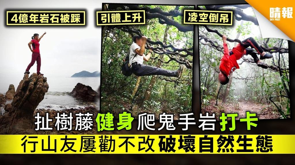 【愛護大自然】扯樹藤健身爬鬼手岩打卡 行山友屢勸不改破壞自然生態