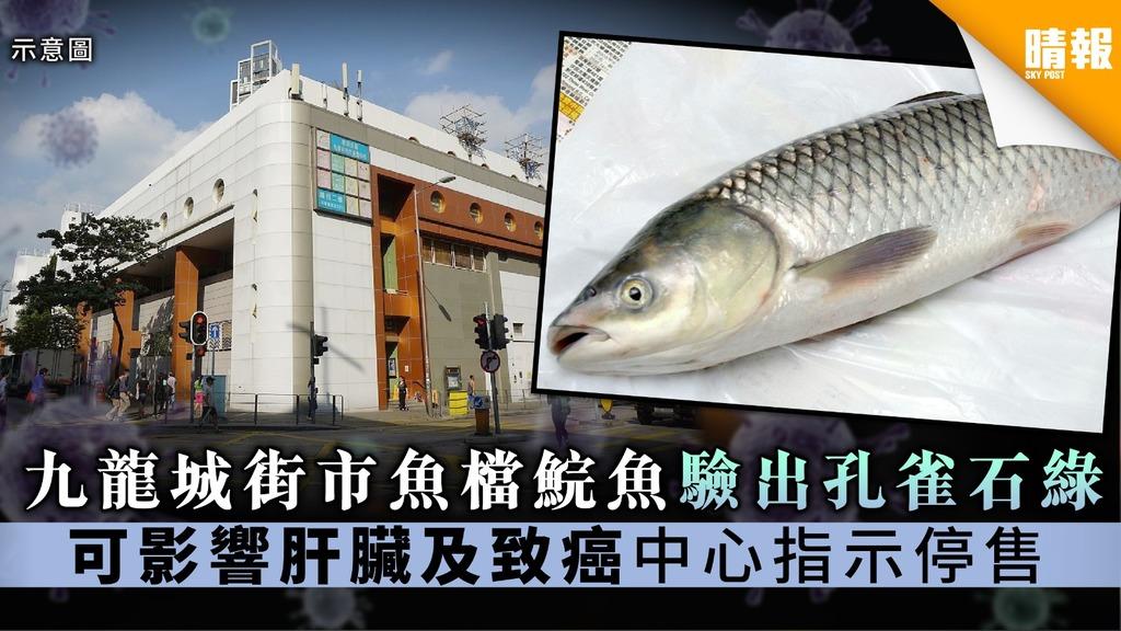 【食用安全】九龍城街市魚檔鯇魚驗出孔雀石綠 可影響肝臟及致癌中心指示停售