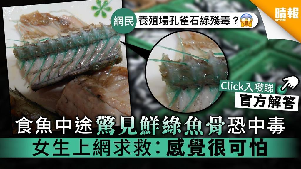【食用安全】食魚中途驚見鮮綠魚骨恐中毒 女生上網求救:感覺很可怕
