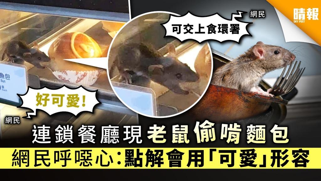 【食用安全】連鎖餐廳現老鼠偷啃麵包 網民呼噁心:點解會用「可愛」形容