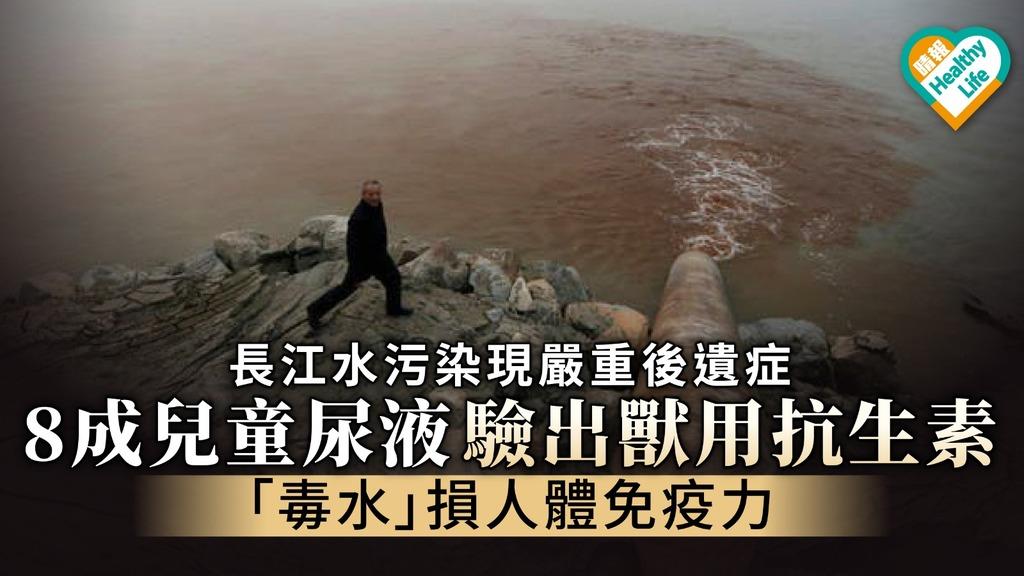【食用安全】長江水污染現嚴重後遺症 8成兒童尿液驗出獸用抗生素 「毒水」損人體免疫力
