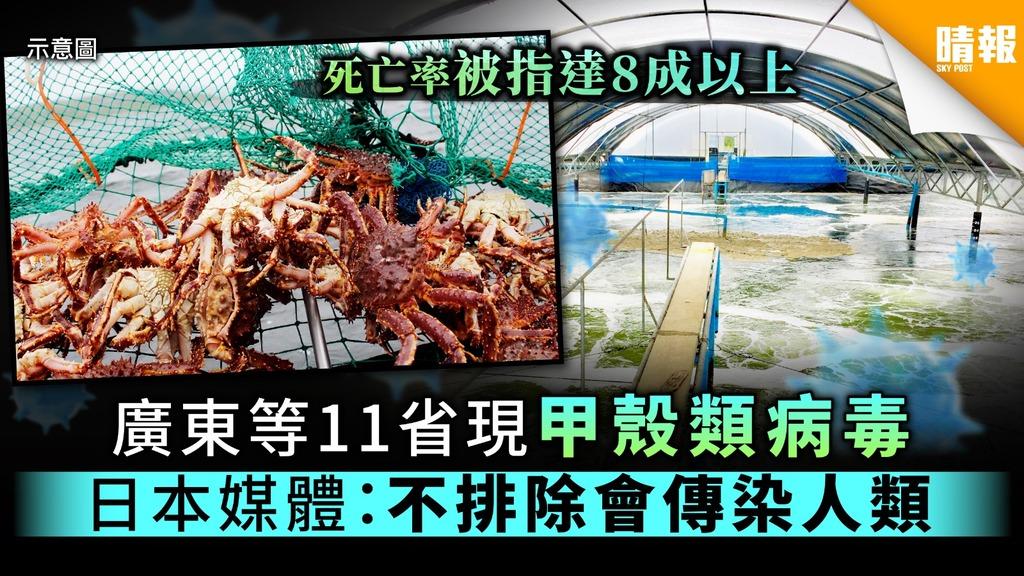 廣東等11省現甲殼類病毒 日本媒體:不排除會傳染人類