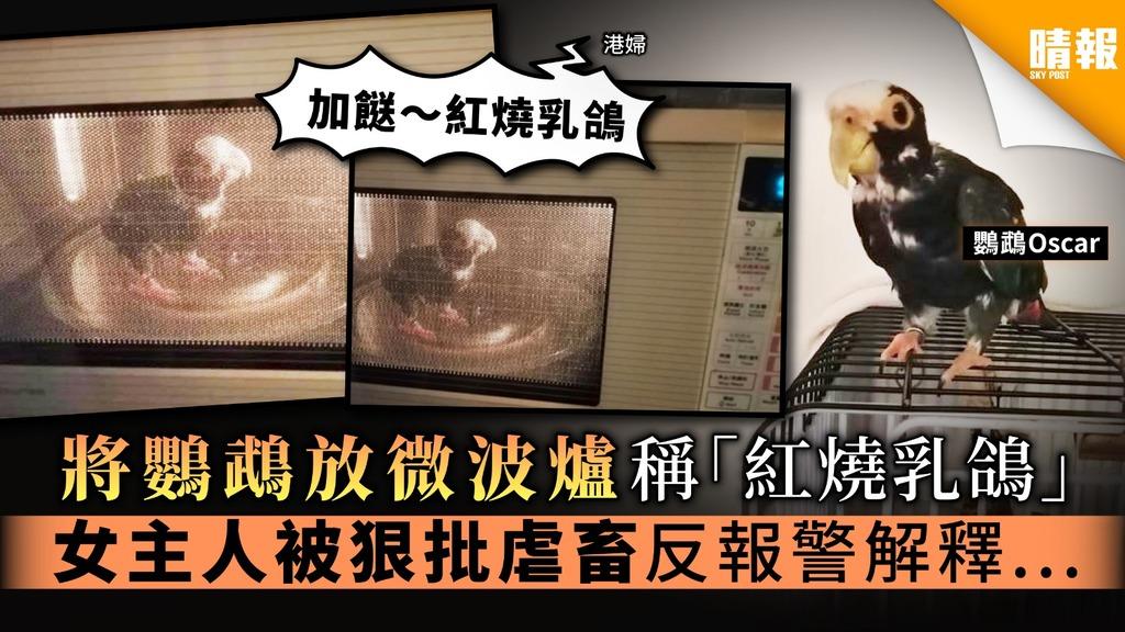 【虐待動物】將鸚鵡放微波爐稱「紅燒乳鴿」 女主人被狠批虐畜反報警解釋...