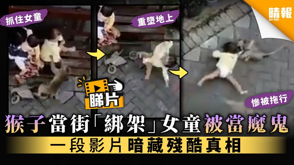 【真相逆轉】猴子當街「綁架」女童被當魔鬼 一段影片暗藏殘酷真相