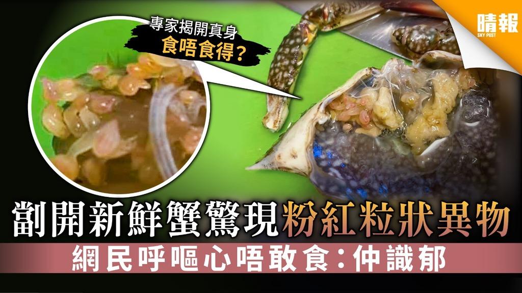 劏開新鮮蟹驚現粉紅粒狀異物 網民呼嘔心唔敢食:仲識郁【附專家解說】