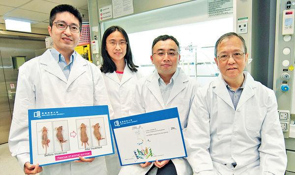 新標靶藥治鼻咽癌 動物用後存活率增8成